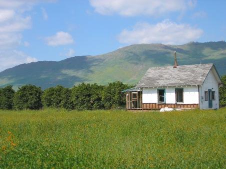 House in field