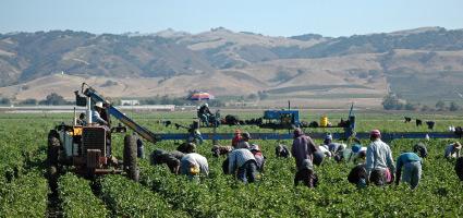 field_workers2