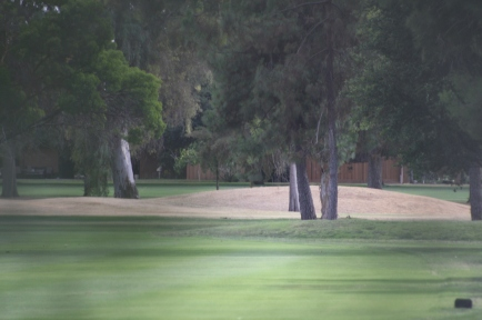 Covert photo (through Oleander bushes) of pristine golf greens