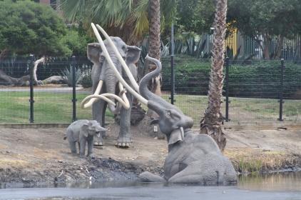 Mammoth - La Brea Tar Pits