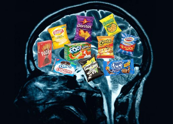 Your-brain-on-food impactlab.net